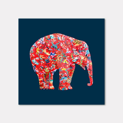 The Mighty Elephants, LBlue
