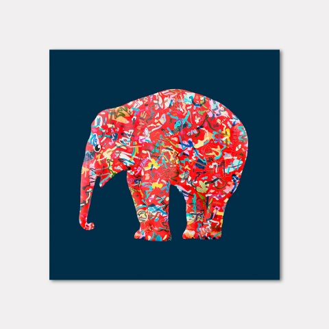 The Mighty Elephants, Blue