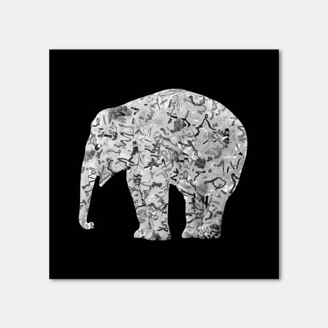 The Mighty Elephants, Black